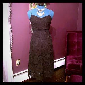 Bebe Dress size 2